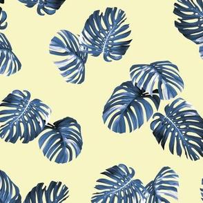 Montsera - yellow