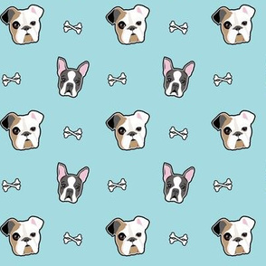 Boston Terriers & Bull dogs - blue