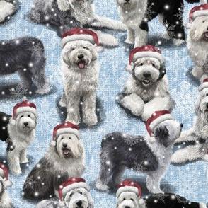 The Christmas Old English Sheepdog