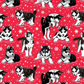 Husky puppies and snowflakes on red 12x12