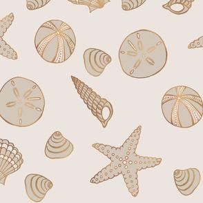Beach Treasures Neutral Seashells
