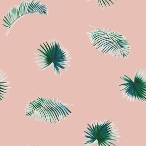 Waterpalms - Blush