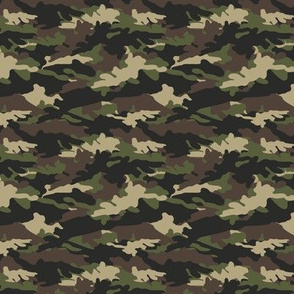 (small scale) C2 - camouflage C19BS