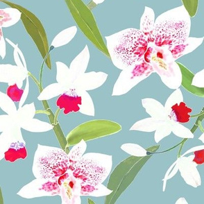 Spotted Orchids II Red on Aqua 300