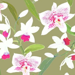 Spotted Orchids II Salmon Pink on Olive 300