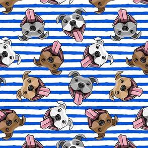 Smiling dogs - blue stripes - happy pit bulls  - LAD19