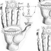 palm reading palmistry divination hands fingers sorcerer's fortune telling sun keys lamps stars alchemy alchemical symbols crown fish planets salt elements planets venus sulphur sulfur magic mystic occult magick  monochrome future ancient antique victoria