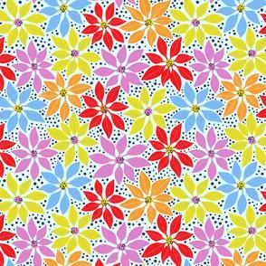 Colourful Poinsettia