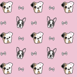 Boston Terriers & Bull dogs - pink