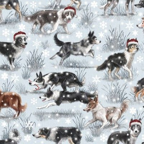 The Christmas Border Collie Dog