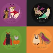 Furry friends in Halloween costumes