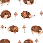 hedgehog dreams with moshrooms