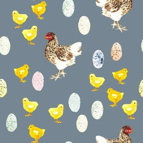 Easter Egg Chickens // Slate Gray