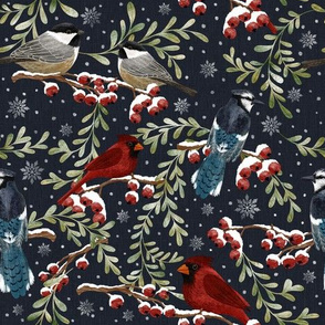 Winter Birds in Snow -dark