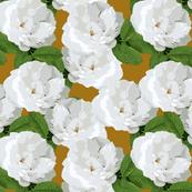 White Rose Mustard
