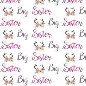 antlers big sister