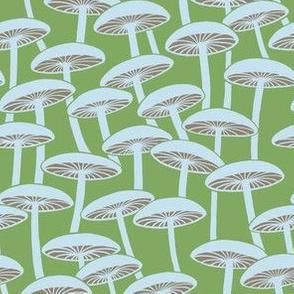 Mushrooms - Cloud Mushrooms with Brown Gills on Apple