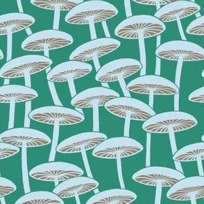 Mushrooms - Cloud Mushrooms with Brown Gills on Grass