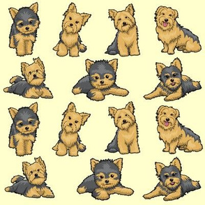 For Yorkie/Yorkshire Terrier Lovers