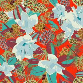 Magnolias evergreen dreams red
