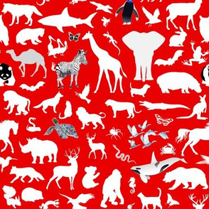 Animal Kingdom - white on red