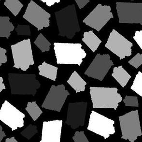 Iowa State Shape Stripes Black and White
