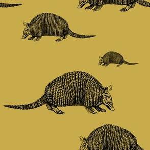 armadillo tatou mustard
