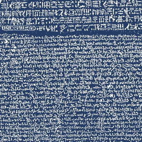 Rosetta Stone // Navy