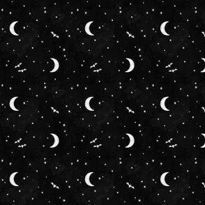 Night sky bats