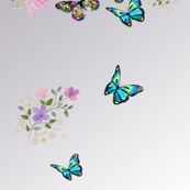 Butterfly and Flowers5
