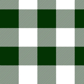 "4"" plaid - dark green and white - LAD19"