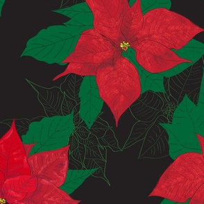Poinsettia black