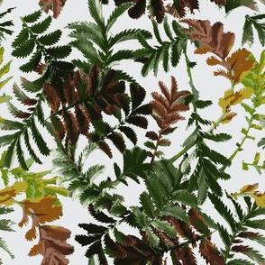 leaf20R1-02-silver