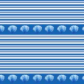 Coastal Shells