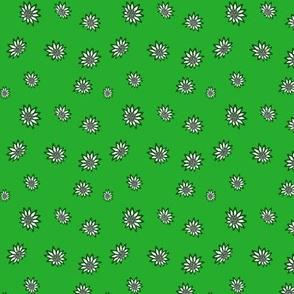 Flower, margarits, green, M079