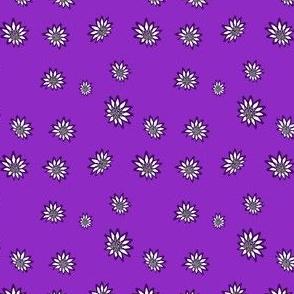 Margarits, flower, M080