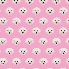 Maltese Dogs Condensed Pattern - Pink Background