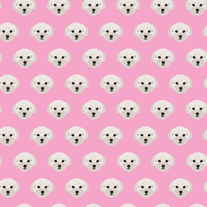 Maltese Dogs Small Condensed Pattern - Pink Background
