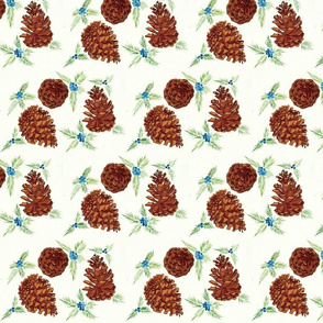 pine cones and juniper (small)