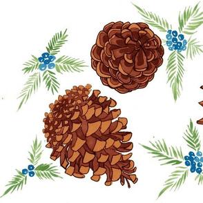 pine cones and juniper