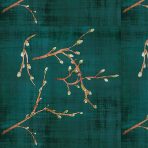 pussy willows on teal background