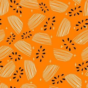 orange fruit and black seed