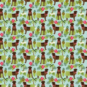 TINY - chocolate labrador fabric hula summer tropical design - light blue