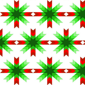 Christmas Cactus Star 2