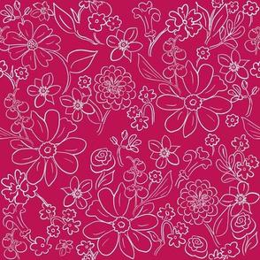 Hand-drawn Garden Outline Raspberry_