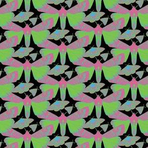 Neon Moths