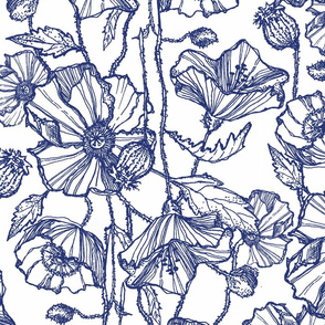 Large Navy Poppies