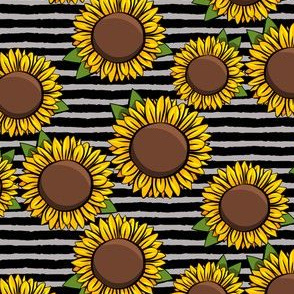 "(2"" scale) Sunflowers - black & grey stripes  C19BS"