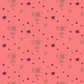 Flower and stars - peach