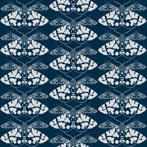 Kimono Illusion